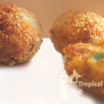 plantain fritters copy