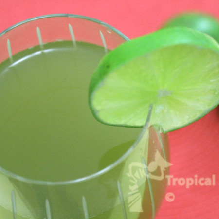 lime and mint cooler copy